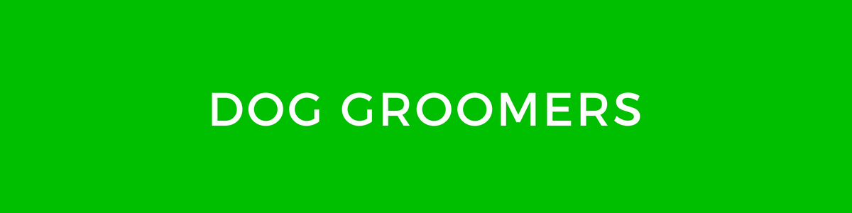 Dog groomers in Torbay