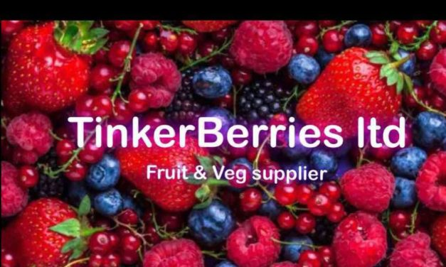 Business Profile – Tinkerberries Ltd.