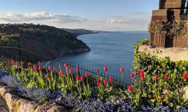 Great Reasons to Visit and Relocate to Torquay